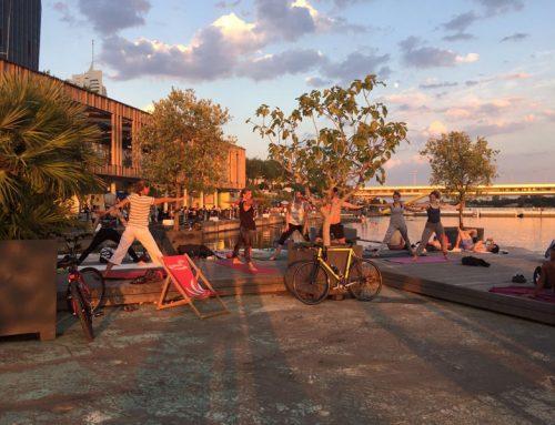 Yoga auf der Donauinsel – Ein Rückblick